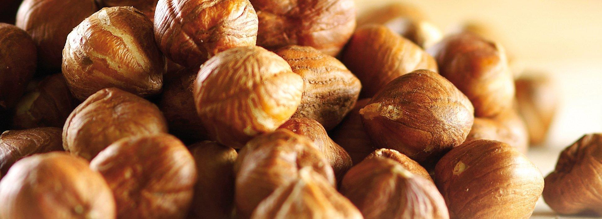 Nocciole, uno degli ingredienti principali
